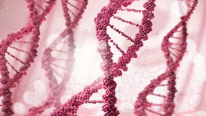 Scientists Discover Gene That Increases Risk of Alzheimer's Disease