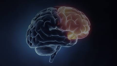 Figuring Out Frontotemporal Dementia: A Look at Social & Emotional Impacts