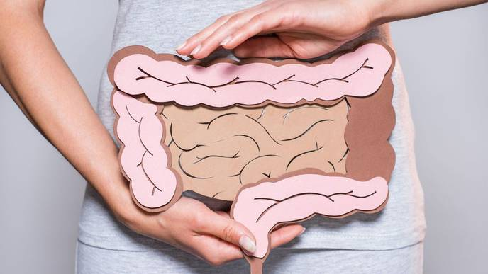 Fecal Transplants Could Be Used to Restore Cognitive Function in the Elderly