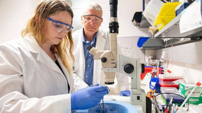 Blueprint for a Reproductive Hormone May Aid Infertility