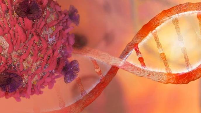 Tumor Test Could Guide Personalized Treatment for Children with Cancer