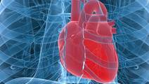 Reduced Device Clotting, Decreased Strokes Seen with Novel Heart Pump