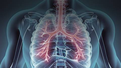 The Heart and the Lungs: Linking COPD and Cardiac Output
