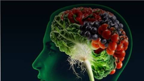 Brain Food for Seniors: Dietary Impacts on Cognition and Longevity