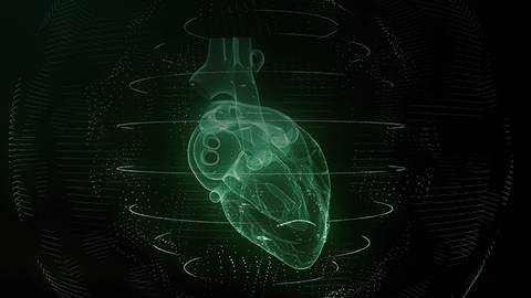 Sci-Fi in the OR: Utilizing Holograms in Cardiac Ablation Procedures
