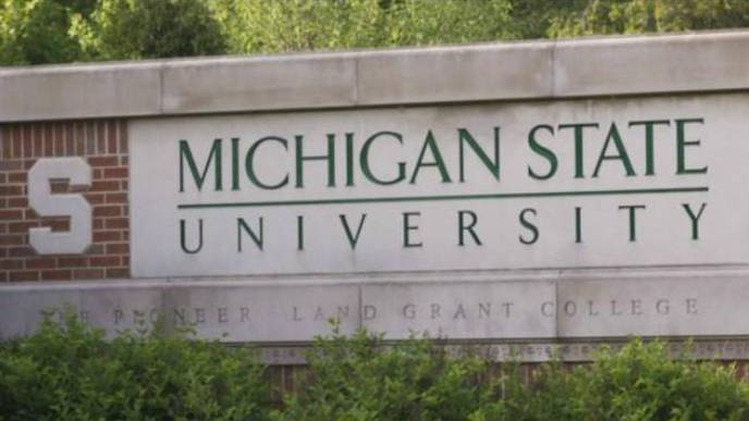 MSU Scientists Discover Possible Genetic Target for Treating Endometriosis