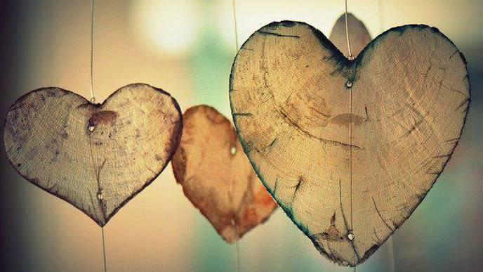 Electric Signals Between Individual Cardiac Cells Regulate Heartbeat