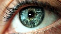 Scientists find 'good' cholesterol could increase risk of eye disease