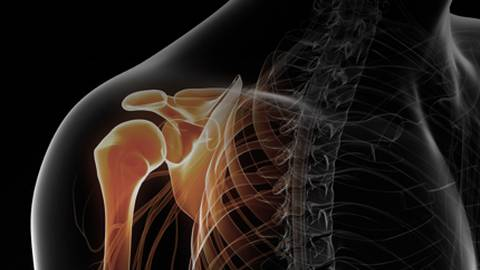 Best Approaches to Shoulder Injuries: From Orthopedics to Primary Care