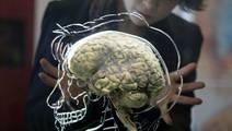 High-Tech 'Smart Needle' Developed To Make Brain Surgery Safer