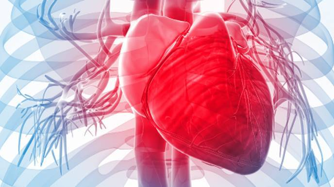 Early Signs of Cardiac Impairment Found in Newly-Diagnosed Lupus