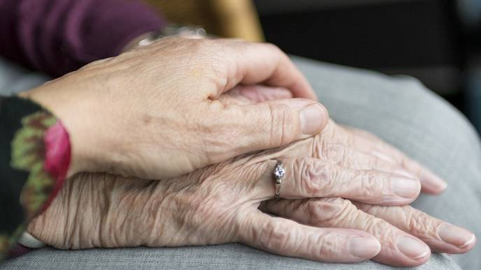 Link Between Herpes Virus Infections & Alzheimer's Refuted