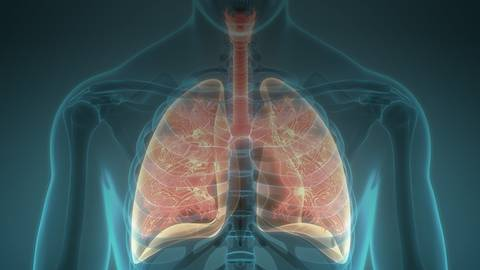 Therapy Gaps: Identifying New Targets in the Management of NSCLC