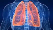 Do Smokers' Lungs Heal After They Quit?