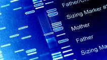 Genetic Risk Score for Autism Linked with Outcomes of Psychological Treatment