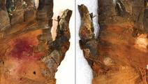 New CT Scanning Technology Offers a Microscopic View of a Mummy's Hand