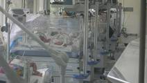Researchers Design Delivery System to Treat Premature Infants With NEC