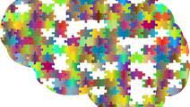 When Storing Memories, Brain Prioritizes the Most Rewarding Experiences