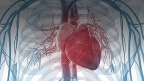 Chronic Heart Failure in Primary Care: Diagnosis, Treatment, Referral