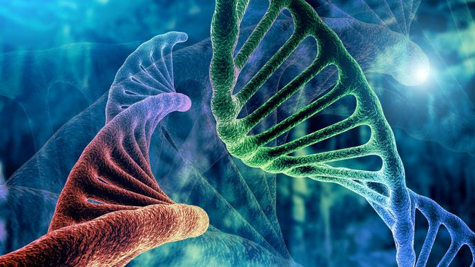 Exploring Novel Gene Therapy Approaches to Treat Ocular Disease