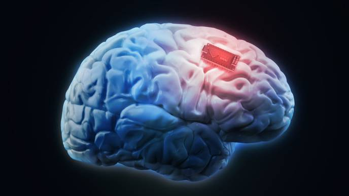Scientists Can Now Manipulate Brain Cells Using Smartphone