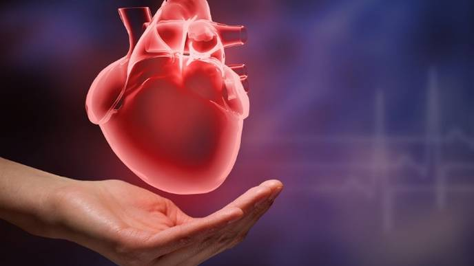 This Injectable Gel could Regrow your Heart after Cardiac Attack
