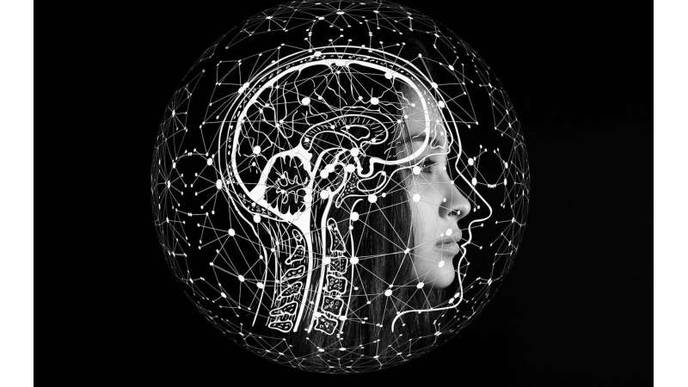 Brain Networks More Stable in Individuals with Higher Cognitive Abilities