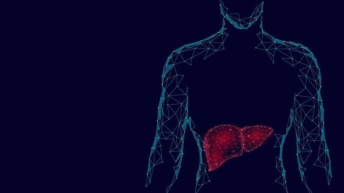 Sex-Disparities Exist in Liver Transplant Allocation