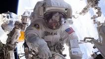Spaceflight Is Activating Herpes in Astronauts