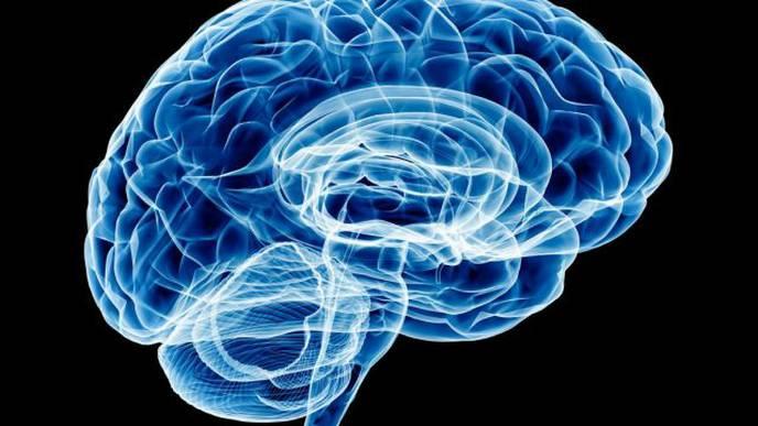 Pyschologists Analyze Language to Categorize Human Goals