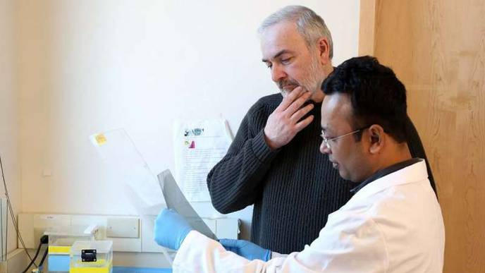 Mutation's Role in Blood Cancers Revealed by Ideal Team-Up