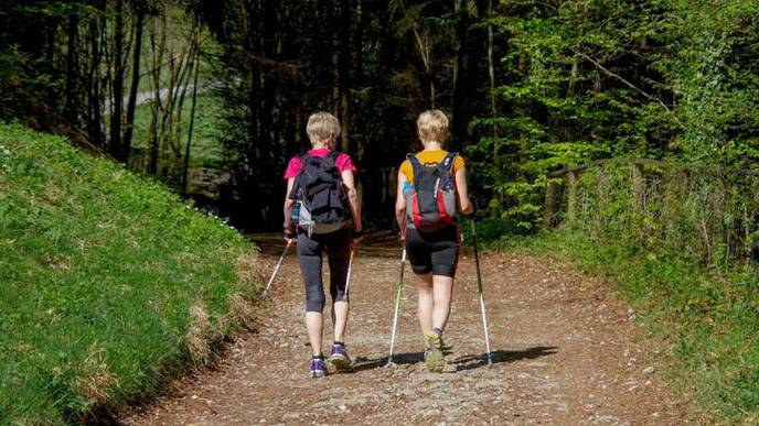 Nordic Walking Can Provide Multiple Benefits for Patients with Breast Cancer
