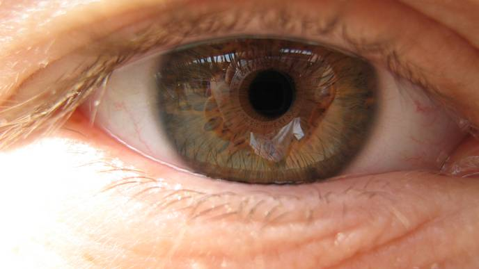 New Hope for Treating Age-Related Macular Degeneration
