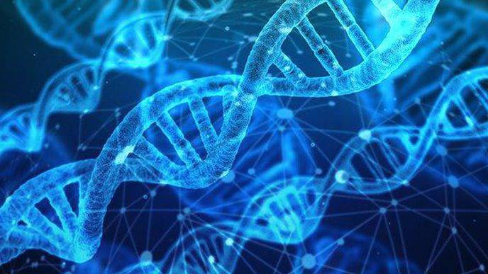 Genetic Profile Models Show Potential to Predict Person's Scleroderma Risk