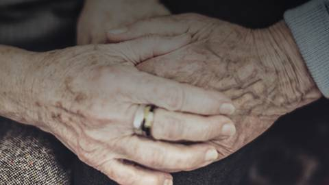 The Underpinnings of Exceptional Longevity
