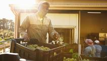 Outdoor Workers have 3 Times Greater Risk of Skin Cancer