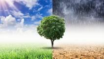 Global Warming Will Hike Mental Health Woes, Study Warns