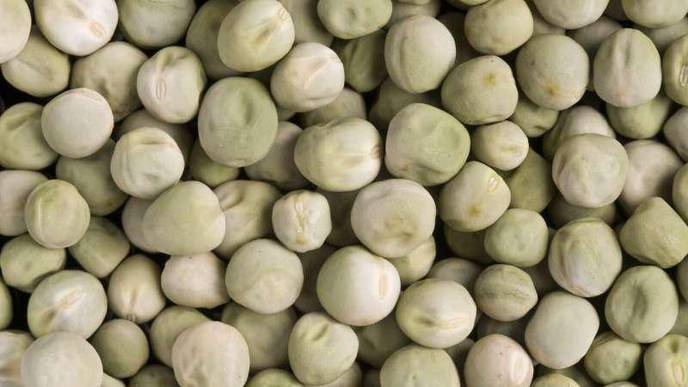Wrinkled 'Super Pea' Could Be Added to Foods to Reduce Diabetes Risk