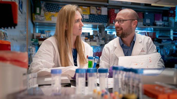 Biological 'Atlas' Shows Dual Personality for Immune Cells That Cause Type 1 Diabetes