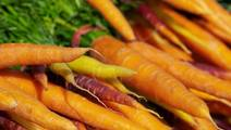 Study: Fruit and Vegetables Linked to Changes in Skin Color