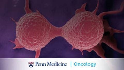 Addressing Breast Cancer's High Recurrence Rates: The Breast Cancer Translational Center of Excellence (TCE)