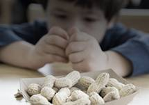 Why are We Seeing an Increase in Peanut Allergies?