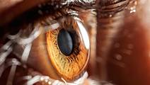 Infectious 'Prions' Found in Eyes of Patients with Fatal Brain Disease