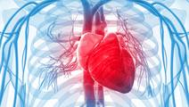Older Age Associated with Greater Cardiac Involvement in Early Systemic Sclerosis