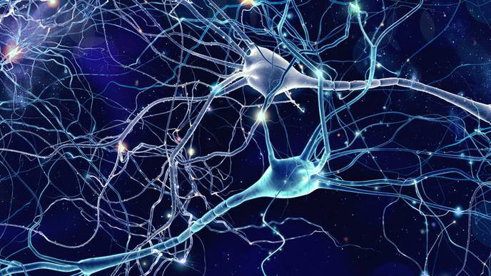 An Alternate Theory for What Causes Alzheimer's Disease