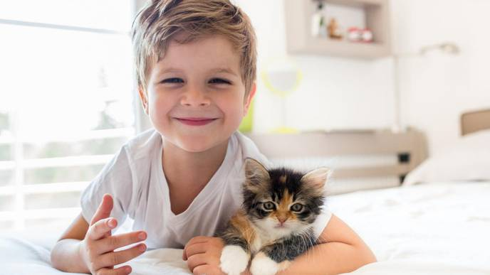 Pets and Pests Could Stave Off Childhood Asthma