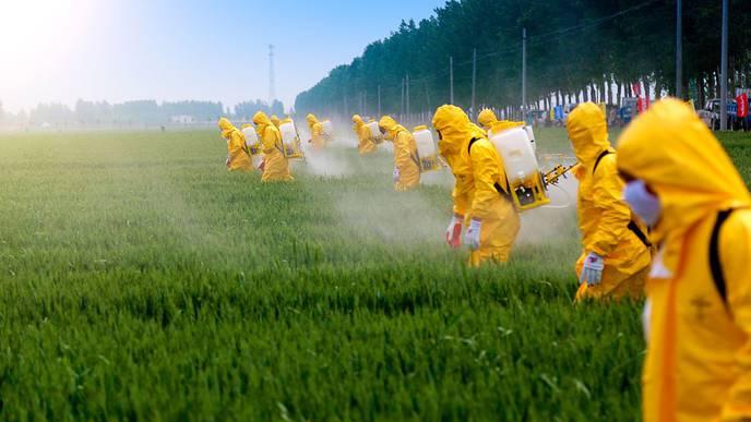 Pesticide Exposure May Increase Heart Disease & Stroke Risk