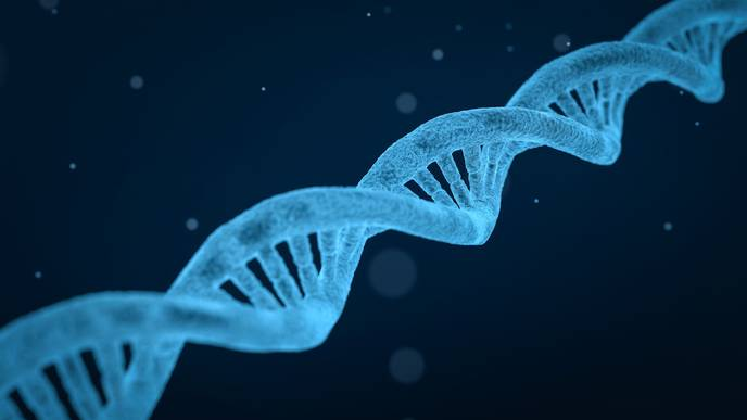 Many Psychiatric Disorders Arise from Common Genes