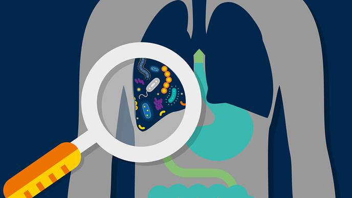 Lung Microbiome May Help Predict Outcomes in Critically Ill Patients