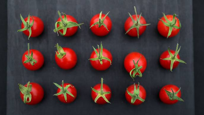 Dietary Supplement from Tomatoes Discovered to Boost Sperm Quality